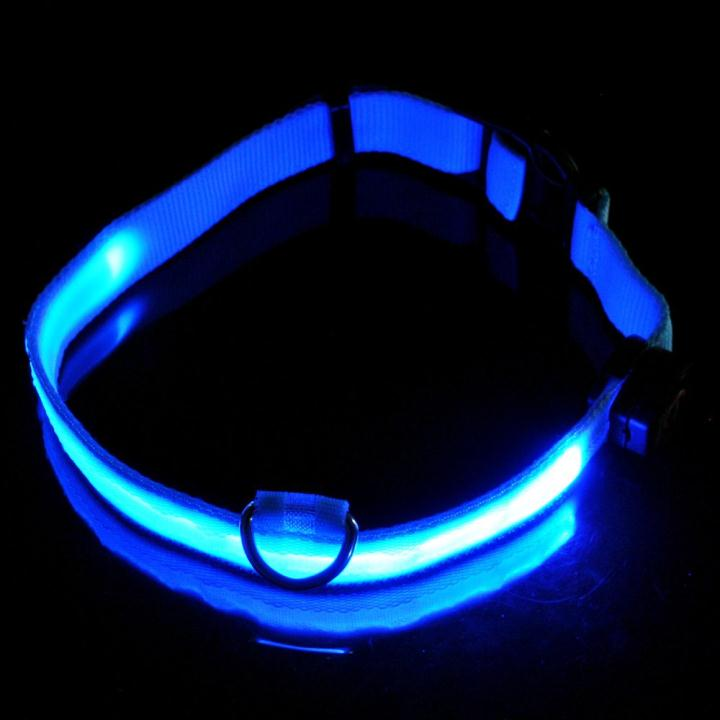LED Dog Pet Flashing Light Up Safety Collar Blue