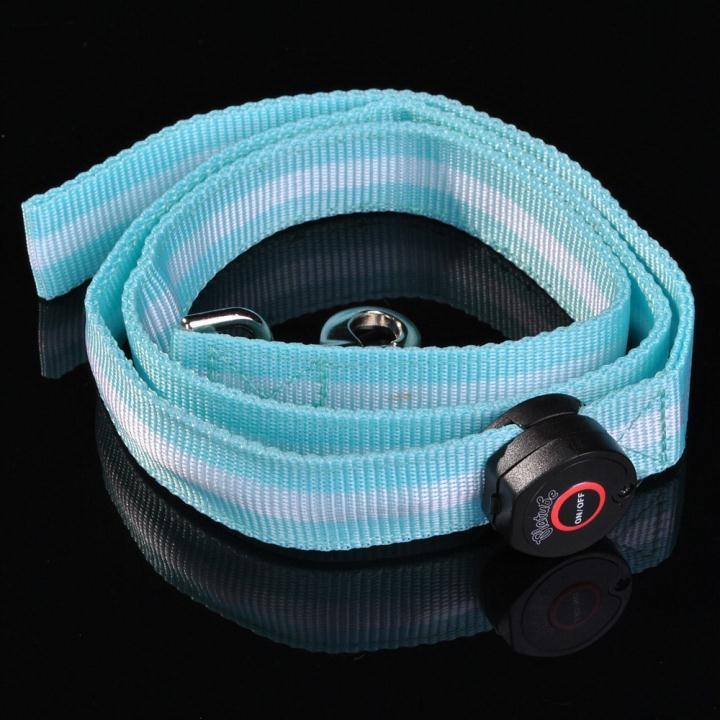 LED Flashing Light Safety Glow Leash Lead Blue